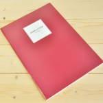 SimPlanner (Red)
