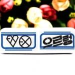 เข็มกลัด/ป้ายชื่อ EXO-K EXO-M (สีขาว)