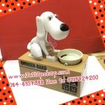 หมาโกยเหรียญ หมาออมสิน สีขาวน่ารัก (มีคลิปการเล่น)