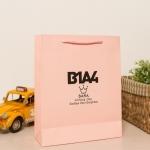 ถุงกระดาษ B1A4