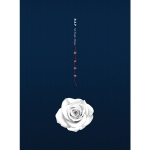 อัลบั้ม #B.A.P - Single Album Vol.6 [ROSE] (B ver.)