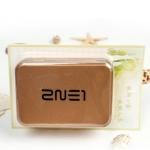 กล่องเหล็ก 2NE1
