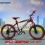 จักรยานเสือภูเขาเด็ก PANTHER ZERO 18 สปีด ล้อ 20 นิ้ว thumbnail 2