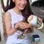 แบ่งขาย 30 เม็ด Premium Royal Jelly (นมผึ้ง) 1200 mg ตรา Healthway thumbnail 5