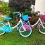 จักรยานเด็ก ALTON ล้อ 18 นิ้ว ,BNK1801S thumbnail 1
