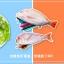 กระเป๋าดินสอปลา (ระบุลาย) thumbnail 3