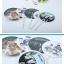 พัดกลม PVC Bigbang thumbnail 4