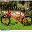 จักรยาน BMX COYOTE รุ่น X-Wing thumbnail 2