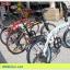 จักรยานพับได้ เฟรมเหล็ก SEEFAR รุ่น SPEED 7สปีด ชิมาโน่ 2015 thumbnail 17