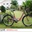 """จักรยานซิตี้ไบค์ FINN """" CITY USA"""" ล้อ 26 นิ้ว 7 สปีด ชิมาโน่เฟรมอลู โช๊คหน้า พร้อมตะกร้า thumbnail 26"""