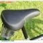 จักรยาน BMX COYOTE รุ่น X-Wing thumbnail 3