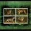 ชุดชีท แสตมป์ชุด สัตว์ป่า เสือในประเทศไทย ชุด 6 ปี 2541 (ยังไม่ใช้) thumbnail 1