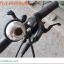 จักรยานเสือภูเขา BATTLE BRAHMA 800 27.5″ MTB DEORE 30 สปีด ดิสน้ำมัน 2017 โช๊ครีโมท thumbnail 15
