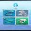 แผ่นชีทแสตมป์ชุด สัตว์ทะเลเลี้ยงลูกด้วยนม ปีทะเลสากล ปี 2541 (ยังไม่ใช้) thumbnail 1