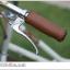 จักรยานแม่บ้าน สไตล์วินเทจ Winn DESIRE วงล้อ 26 นิ้ว พร้อมตะกร้า thumbnail 22