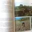 หนังสือเมืองไทยของเรา พศ.2525 thumbnail 8