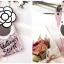 เคส tpu ดอกไม้ซ่อนกระจก ไอโฟน 6/6s plus 5.5 นิ้ว thumbnail 8