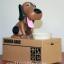 กระปุกออมสินหมากินเหรียญ Dog Saving Bank thumbnail 5