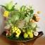 C008-สวนต้นไม้มงคล มะยม ส้ม ขนุน กล้วย_ไซร์ 4-6 นิ้ว thumbnail 3