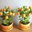 S005-ต้นส้มสูง 9 นิ้ว จำนวน 9 ลูก thumbnail 2