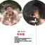 พัดกลม PVC Descendants of the Sun Song Joong Ki thumbnail 1