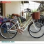 จักรยานซิตี้ไบค์ COYOTE ABBA 26 นิ้ว 6 สปีด พร้อมตะกร้าหน้า thumbnail 2