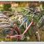 จักรยานญี่ปุ่น 1-04-57 thumbnail 4