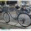 จักรยานแม่บ้าน TRINX CUTE2.0 เฟรมเหล็ก 7 สปีดชิมาโน่ 2017 thumbnail 8