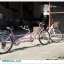 """จักรยานคู่รัก 26"""" สองตอน (ขี่ได้ 2 คน พร้อมกัน) 26"""" Asama MONSOON TANDEM เฟรม Alloy thumbnail 6"""