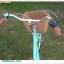 จักรยาน มินิครุยเซอร์ WCI BEACH BIKE วินเทจ 7 สปีด thumbnail 4