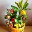 C022-สวนต้นไม้มงคล ทับทิม มะยม ส้ม กล้วย ขนุน_ไซร์ 3-6 นิ้ว thumbnail 2
