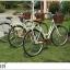 จักรยานแม่บ้าน สไตล์วินเทจ Winn DESIRE วงล้อ 26 นิ้ว พร้อมตะกร้า thumbnail 7