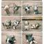 พวงกุญแจแก๊งแมวเหมียวน่ารัก 9 แบบ thumbnail 3