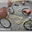 จักรยาน มินิครุยเซอร์ WCI BEACH BIKE วินเทจ 7 สปีด thumbnail 9