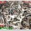 เปิดตู้จักรยานมือสอง 5-02-57 thumbnail 7