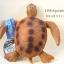 โมเดลเต่าทะเลสีน้ำตาล ขนาด 10 นิ้ว ยางอ่อนนุ่มนิ่ม บีบได้ thumbnail 2