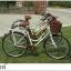 จักรยานแม่บ้าน สไตล์วินเทจ Winn DESIRE วงล้อ 26 นิ้ว พร้อมตะกร้า thumbnail 6