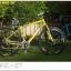 จักรยาน WCI URBAN MAG เฟรมอลู ล้อ 26 นิ้ว 24 สปีด thumbnail 1