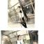 เสื้อกั๊ก BTS (เมมเบอร์) thumbnail 7