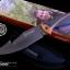 มีดใบตาย Gerber sheath knife model 31-000752 ปลายแหลมยาว ขนาด 10 นิ้ว (OEM) thumbnail 11