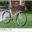 จักรยานแม่บ้าน สไตล์วินเทจ Winn DESIRE วงล้อ 26 นิ้ว พร้อมตะกร้า thumbnail 17