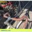 !!!SALE!!! จักรยานเสือหมอบทัวร์ริ่ง WCI รุ่น F1 เฟรมอลู ดิสหน้า+หลัง มือตบ Tourney 14 สปีด thumbnail 9