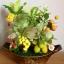 C008-สวนต้นไม้มงคล มะยม ส้ม ขนุน กล้วย_ไซร์ 4-6 นิ้ว thumbnail 1