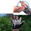 ถุงมือขี่จักรยานครึ่งนิ้ว HAND CREW SS-8-2(GEL) thumbnail 4