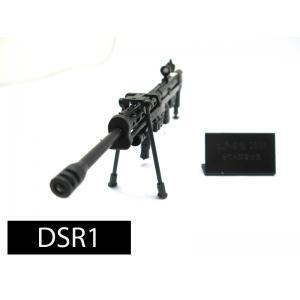 โมเดลปืน 4D Model โมเดลปืนทหาร แบบ DSR1