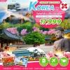 ZT ICN04 ทัวร์ เกาหลี CHERRY BLOSSOM KOREA 5 วัน 3 คืน บิน XJ