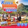ZT ICN09 ทัวร์ เกาหลี Summer Fin & Fiin Korea เพิ่มเวลา Everland อิสระช้อปปิ้งเต็มวัน ใส่ชุดฮันบกเดินชมพระราชวัง 5 วัน 3 คืน บิน TG