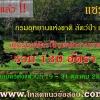 [ไม่ต้องผ่าน ภาค ก] กรมอุทยานแห่งชาติ สัตว์ป่า และพันธุ์พืช รับสมัครพนักงานราชการ 130 อัตรา 19-31 ต.ค.60