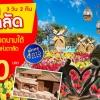 BIC VN01_VJ ทัวร์ โปรหรรษา หนีร้อนไปดาลัด 3 วัน สัมผัสเมืองสุดโรแมนติก แห่งเวียตนามใต้ 3 วัน 2 คืน บิน VJ