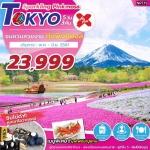 ZT NRT19 ทัวร์ ญี่ปุ่น โตเกียว SPARKLING PINKMOSS TOKYO 5 วัน 3 คืน บิน XJ